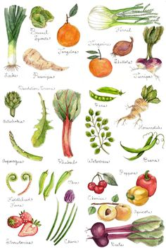 Watercolour inspiration -vegetables