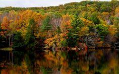 Dunns Pond in Gardner, Ma  Photo taken by: Dorothy Miller
