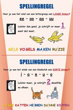 Begrijpend lezen 7 strategieën – Poster in de Klas Reading comprehension 7 strategies – Poster in the classroom Primary Education, Kids Education, Childhood Education, Speech Language Therapy, Speech And Language, School Hacks, I School, Learning Quotes, Kids Learning