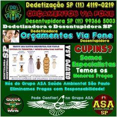 DD SP 11 4119 0219 Dedetizadora São Paulo: DD Alfa SP-11-4119-0219/99366-5003 (What's App Orç...