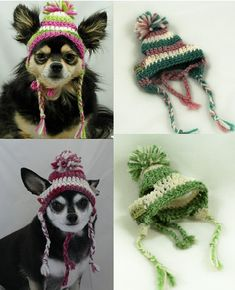 Dog earflap hat with pompom and braids, crocheted, Xsmall or Small, you pick 1, 2 or 3 colors (no pattern, purchasable pet hat)