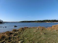 Bild: gård/skog på Gårö, Mönsterås kommun Mönsterås