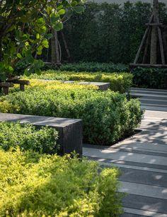 PanoramicStudio-春泉镇拉差帕鲁克-345 Landscape Elements, Landscape Architecture Design, House Landscape, Contemporary Landscape, Urban Landscape, Modern Planting, Modern Landscaping, Landscaping Plants, Lanscape Design