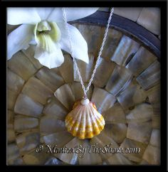 """The """"Town & Country Style"""" combines the best of both worlds, a frilly, delicately colored melon and white Hawaiian Sunrise Shell with a North Shore Puka Shell and an amber colored Swarovski Crystal embellishment. This beautiful pendant hangs on an 18 inch sparkling sterling silver rope chain necklace. The amazing Sunrise Shells full of ruffles and perfectly round in shape, measuring one full inch in size. Its coloring is soft and feminine. www.MonicaByTheShore.com"""