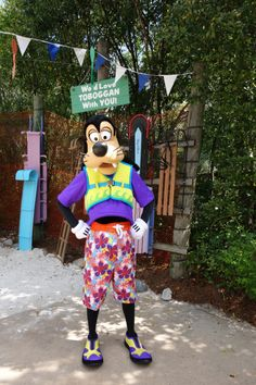 Disney Water Parks - Where to find the Characters on your next visit