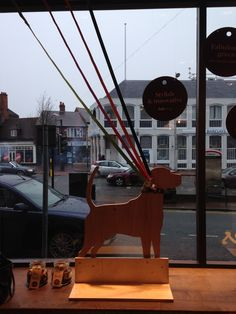 Barkers, the new dog grooming spa and shop in Wilmslow
