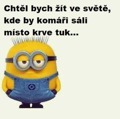 No... Kéžby... :D Minions Quotes, Jokes Quotes, Memes, Smile Photo, Pusheen, Funny Photos, Funny Texts, True Stories, Haha