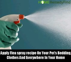 DIY Find Home Remedies - http://www.homeremedyfind.com/excellent-home-remedies-for-fleas/
