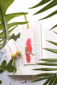 Keep track of your place in a favourite book, journal or magazine with this unique handmade wood king parrot bookmark. You will no longer need to reach for an old receipt or scrap of paper to mark your place…and no more folding the corners of pages!  Each bookmark is handmade in Australia using lightweight, flexible wood, gorgeous photo image transfer and finished with coloured ribbon. #stitchandwood #bookmark #king parrot #birdlover #giftidea Flexible Wood, Wood Transfer, Ribbon Colors, Book Journal, Book Lovers, Are You The One, Bookmarks, Parrot, Mall