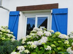 French Cottage shutters in cobalt blue The Little White House On The Seaside