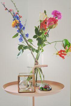Bloemen in huis, het is lente! - New Stories