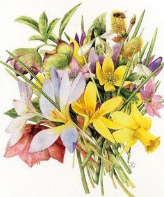 Marjolein Bastin - Spring bouquet & bee