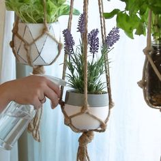 Want to make cool hanging plants at home? No problemo. Here is a simple tutorial Hanging Pots, Diy Hanging, Wall Hanging Plants Indoor, Indoor Plants, Deco Nature, Decoration Plante, Macrame Plant Hangers, Plant Decor, Flower Pots