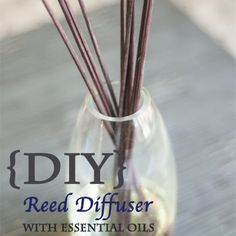 Reed Diffuser with doTERRA Essential Oils. Add about a teaspoon of vodka or 90% or higher alcohol to help oils travel up the reed.