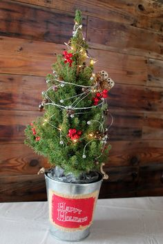 3 Reasons you'll want to pick a live Christmas tree this year. We love our tabletop tree from Jackson & Perkins! It smells awesome and comes with everything to make it look cute!