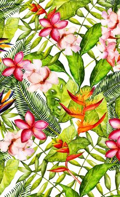 My Aloha Tropical Flower Hibiscus Garden Window Curtains