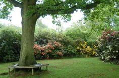 Dudmaston Hall Shropshire, The Gardens