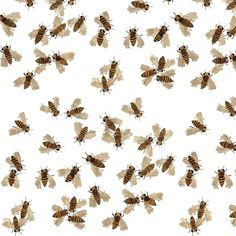 gollybard woodland fabric collection on spoonflower. honeybees fabric.