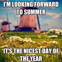 Summer in Holland by Allard One. I would love to go to Holland one day and see where my Opa is from. :) ('Queen Anne's Lace'--flowers--in, the foreground). Funny Couples Memes, Couple Memes, Couple Quotes, Funny Sayings, Funny Couple Pictures, Funny Photos, Life Humor, Mom Humor, Funny Humor