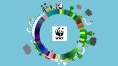 – WWF TVC