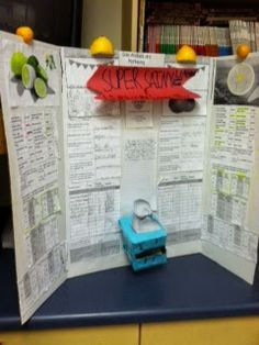 Project Based Learning for 5th Grade Math: Lemonade Stand Business Plan