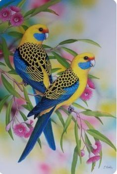 """""""Yellow Rosellas"""" by Lyn Cooke. Paintings for Sale. Bluethumb – Online Art Galle… """"Yellow Rosellas"""" by Lyn Cooke. Paintings for Sale. Most Beautiful Birds, Beautiful Nature Pictures, Beautiful Nature Wallpaper, Animals Beautiful, Cute Birds, Pretty Birds, Funny Birds, Exotic Birds, Colorful Birds"""