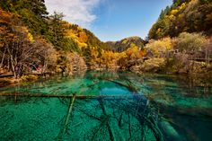 Crystal clear water
