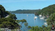 this will always feel like home; photo of FitzRoy harbor on Great Barrier Island courtesy of Kay