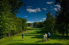 Can't wait to go golfing this summer? See why you should head to Mount Pleasant for a fantastic golfing getaway.
