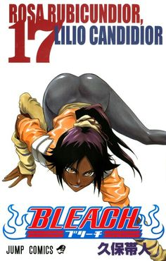 BLEACH Volume 17