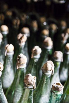 Old cava bottles at Codorniu http://www.jotainmaukasta.fi/2014/10/04/vierailu-codorniun-viinitilalla-penedeksessa/
