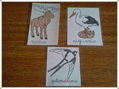 tarjetas de animales que migran
