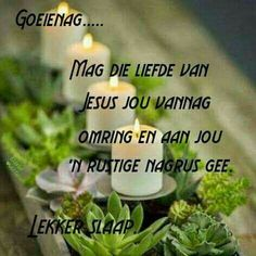 Afrikaanse Quotes, Good Night Blessings, Goeie Nag, Herbs, Thoughts, Sleep Well, Lilac, Cottage, Good Night Wishes