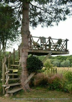 Who says adults can't have a tree house?!
