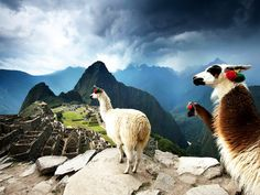 Les temples du Machu Picchu