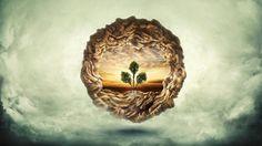 Finaliza un ciclo, se abren nuevas oportunidades, es parte del flujo de la vida. Para emerger se necesitan bases, son las raíces las que fortalecen y nutren a los arboles. Gracias a tus ancestros eres un maravilloso ser, independientemente de donde vengas, quien fue tu familia o de que país seas, llévalo con orgullo, honra …