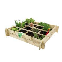 Start met moestuinieren met een vierkantemetertuin