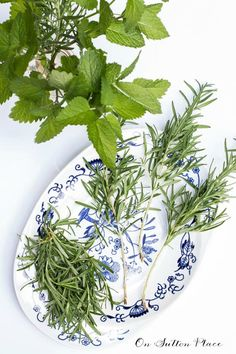 Simple Arrangements Using Garden Flowers & Herbs   Includes list of herbs that pair nicely with garden flowers. Lots of tips and ideas!