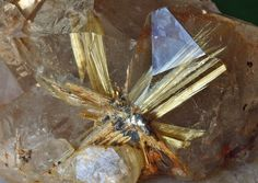 All sizes | Semi Enclosed Golden Star of Rutiles and Hematite Citrine | Flickr - Photo Sharing!