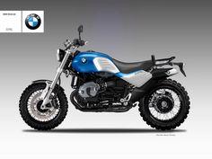 "BMW R 1200 ""DESERT SLED"""
