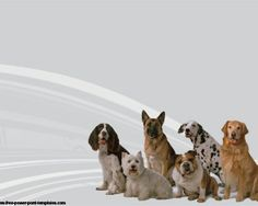 Free dogs PowecrPoint template