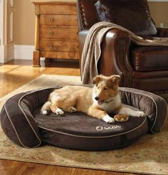 While ordinary cushions can trap too much heat against your dog's body, this unique pet bed whisks away excess heat for a cool, comfortable sleep.