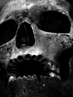 I want your skull, I need your skull.