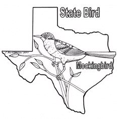 Texas Coloring Pages Texas Bob S Texas Coloring Sheets Flag