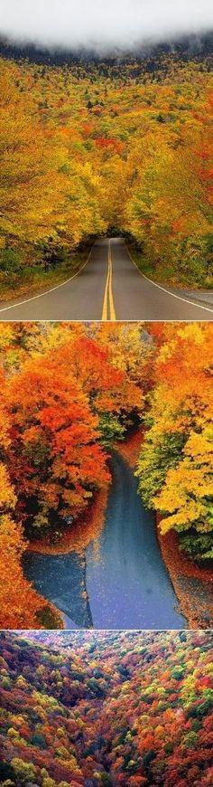 Autumn In Vermont by JypzJewelz