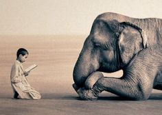 Child reading to elephant.  Elephant is intrigued.
