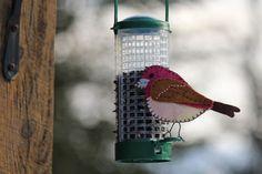 A purple finch ornament pattern.