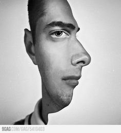 Weird pic watch it switch the face back and forth