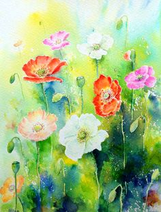 Original watercolour painting poppies watercolor a4 flower poppy field white yellow orange pink red mixed colour