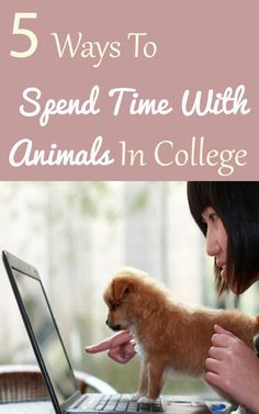 5 Ways To Spend Time with Animals In College